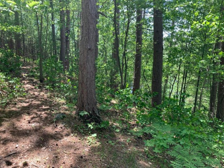 LOT 17 Mccarthy Lake Rd, Wilson, WI by Lakeplace.com - Vacationland Properties $55,700