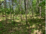 LOT 29 Whitetailed Deer Dr, Wilson, WI by Lakeplace.com - Vacationland Properties $25,500