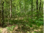 Lot 22 Whitetailed Deer Dr, Wilson, WI by Lakeplace.com - Vacationland Properties $27,800