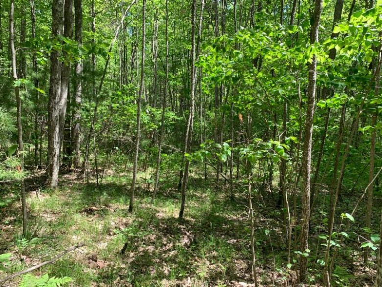 LOT 44 Norway Pine Tr, Wilson, WI by Lakeplace.com - Vacationland Properties $41,700