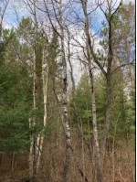 ON Kalata Rd, Caswell, WI by First Weber Real Estate $72,000