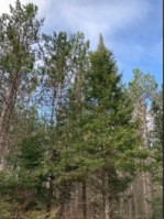 ON Cth O Caswell, WI 54520 by First Weber Real Estate $136,620