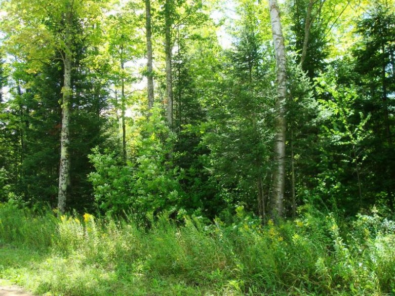 ON Velvet Lake Rd, Newbold, WI by First Weber Real Estate $231,058