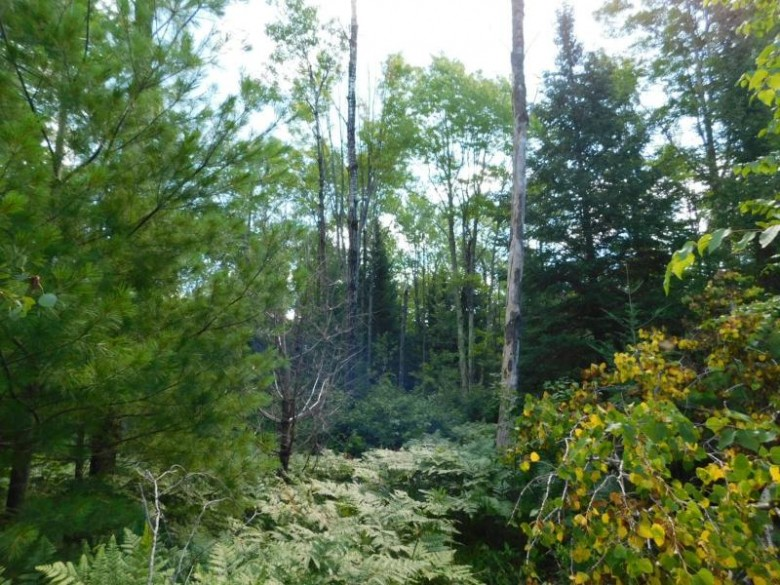 LOT 2 Sanctuary Rd, Tomahawk, WI by Century 21 Best Way Realty $22,000