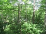 ON Jackson Heights Rd, Cassian, WI by Re/Max Property Pros-Minocqua $99,750