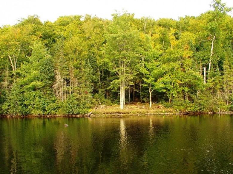 TBD Homan Lake Rd 25, Iron River, MI by First Weber Real Estate $189,950