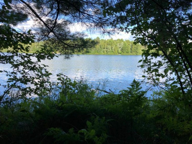 ON Tepee Lake Trl, Cloverland, WI by Eliason Realty Of The North/Er $89,900