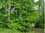 LOT 6 Squaw Lake Rd W, Minocqua, WI by Redman Realty Group, Llc $69,000