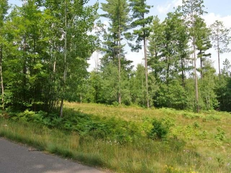 LOT 1 Joshua Ct, Minocqua, WI by Redman Realty Group, Llc $30,800