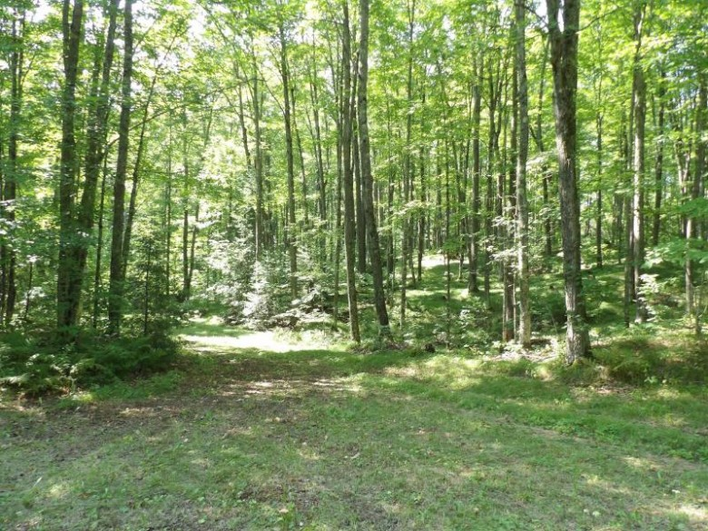 ON Cth Q, Parrish, WI by Norwisrealty.com Llc $249,900