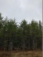 ON Cth Y, Little Rice, WI by First Weber Real Estate $670,000