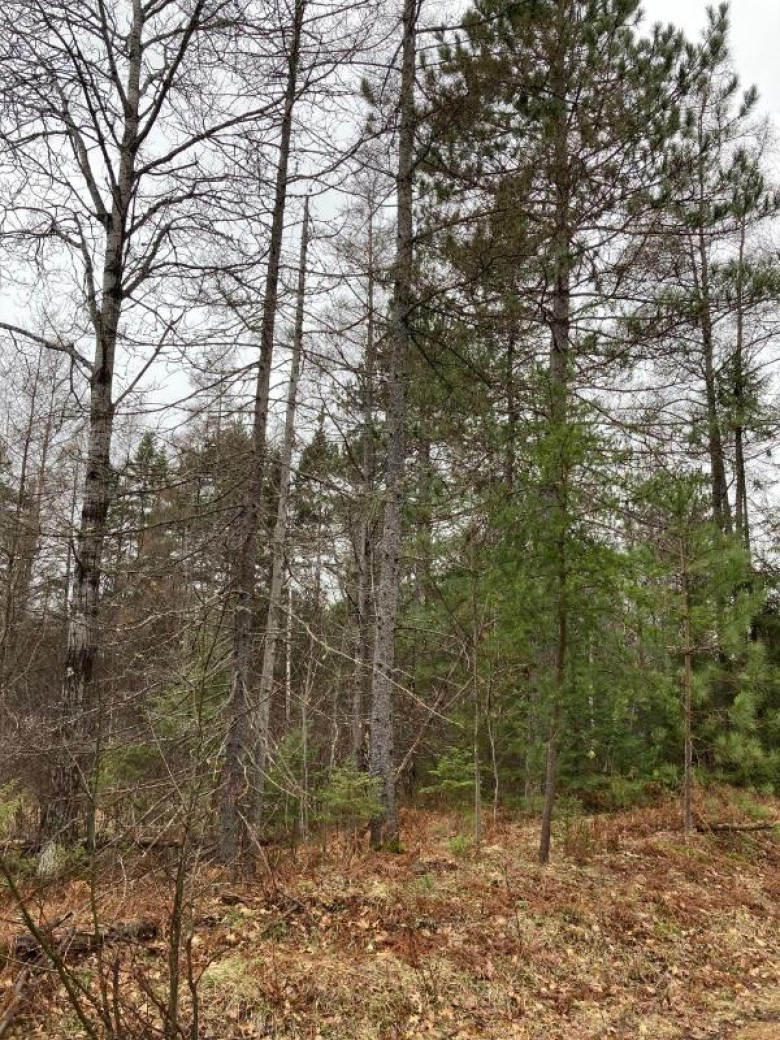 ON Cth G, Pelican, WI by First Weber Real Estate $205,758