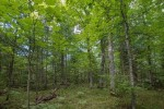 ON Lost Canoe Tr, Boulder Junction, WI by Re/Max Property Pros-Minocqua $59,900