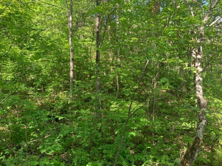 ON Camp 26 Rd, Corning, WI by Northwoods Community Realty, Llc $54,900