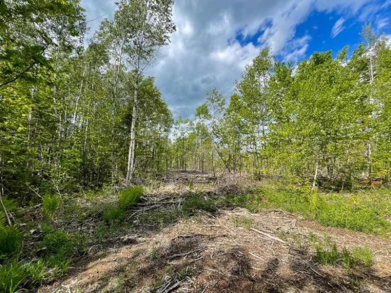 32 AC ON Chaney Lake Rd, Bessemer, MI by Coldwell Banker Mulleady - Mw $119,000