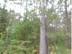 LOT 26 Mccarthy Lake Rd, Wilson, WI by Century 21 Best Way Realty $20,900
