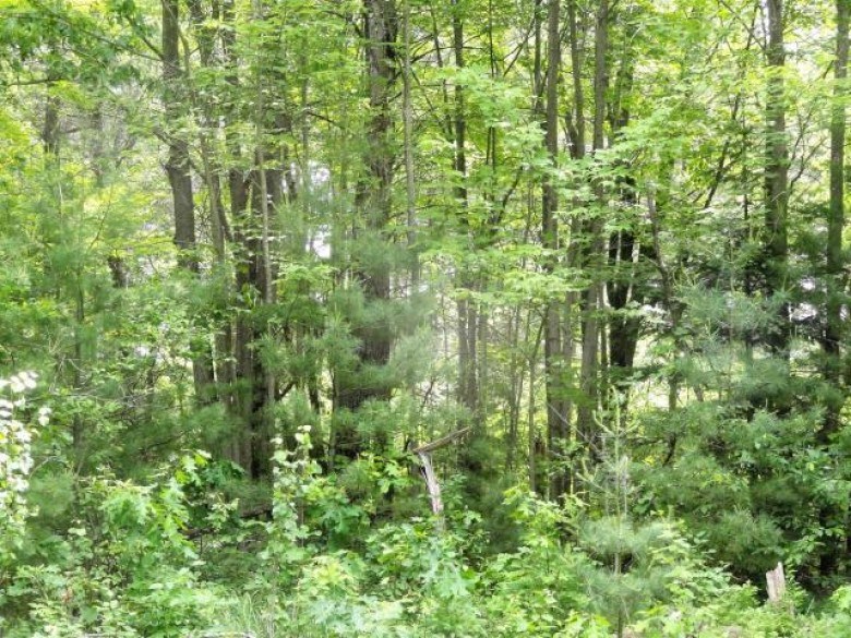 ON Woodland Dr, Bradley, WI by Re/Max Property Pros - Tomahawk $99,000