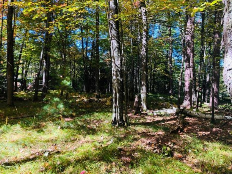 LOT 4 Lakeland Dr, Arbor Vitae, WI by Redman Realty Group, Llc $59,900
