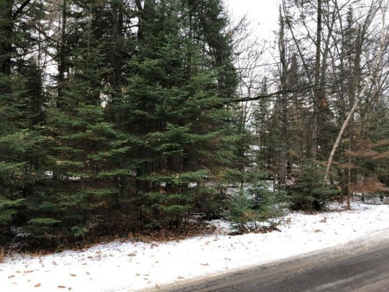 ON Indian Tr LOT 22, St. Germain, WI by Eliason Realty Of St Germain $13,900