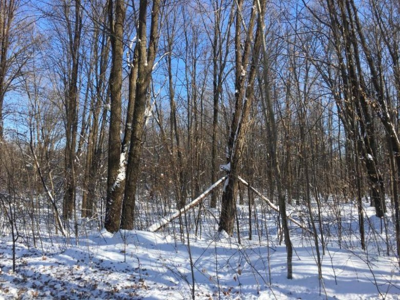 N3347 Cortland Rd, Polar, WI by First Weber Real Estate $347,000