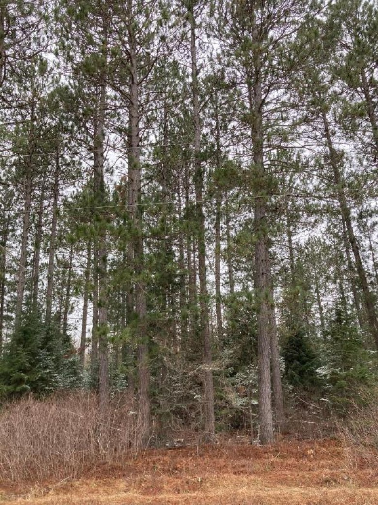 ON Cth Y, Little Rice, WI by First Weber Real Estate $74,000