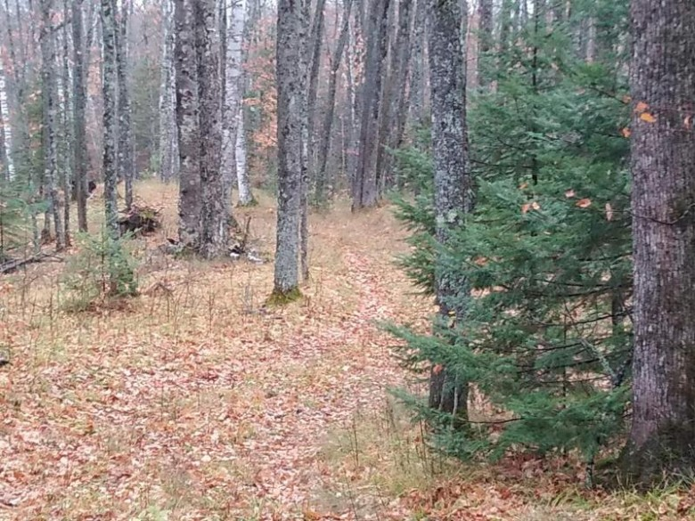 LOT OFF Cth Ff, Mercer, WI by Redman Realty Group, Llc $39,900
