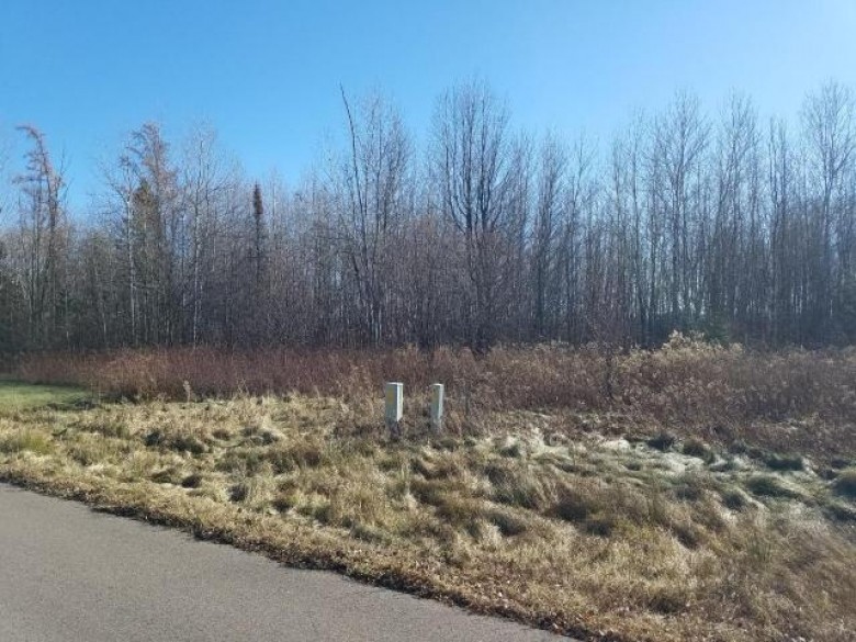 ON Green Tree Dr LOT 22, Prentice, WI by Birchland Realty, Inc. - Phillips $7,000