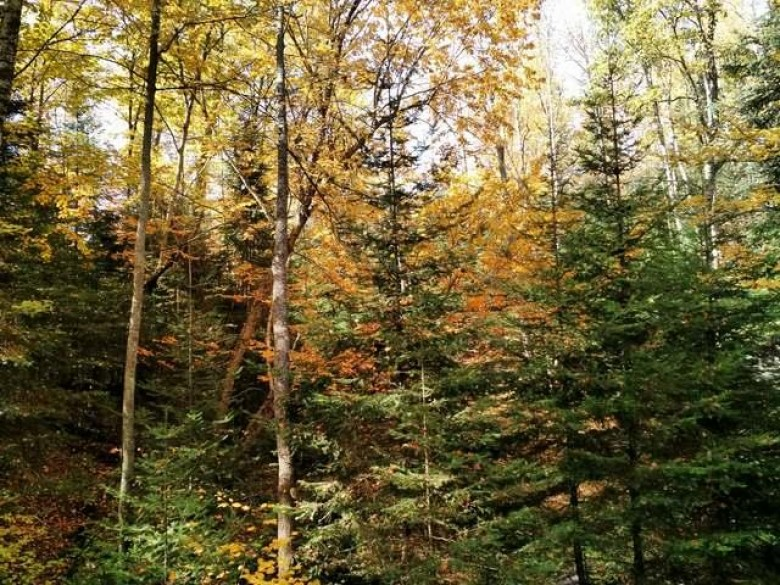 LOTS Indian Lake Rd #19 & #20, Land O Lakes, WI by Coldwell Banker Mulleady-Er $150,000