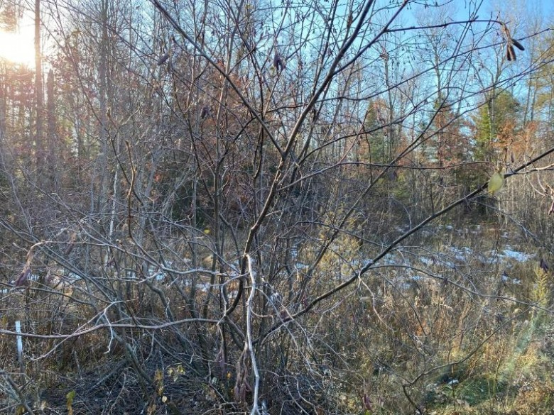 ON Cth W, Pine Lake, WI by Coldwell Banker Mulleady-Rhldr $19,000
