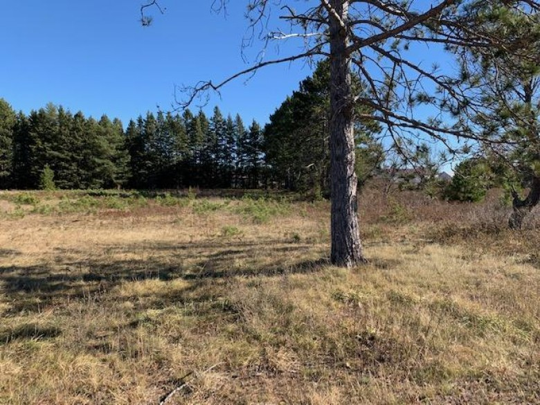 ON Adams Rd, Eagle River, WI by Coldwell Banker Mulleady-Er $40,000
