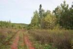 Hwy 2, Wakefield, MI by First Weber Real Estate $64,950