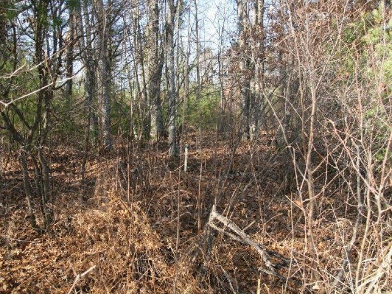 LOT 4 Packers Rd, Lake Tomahawk, WI by Northwoods Community Realty, Llc $75,000