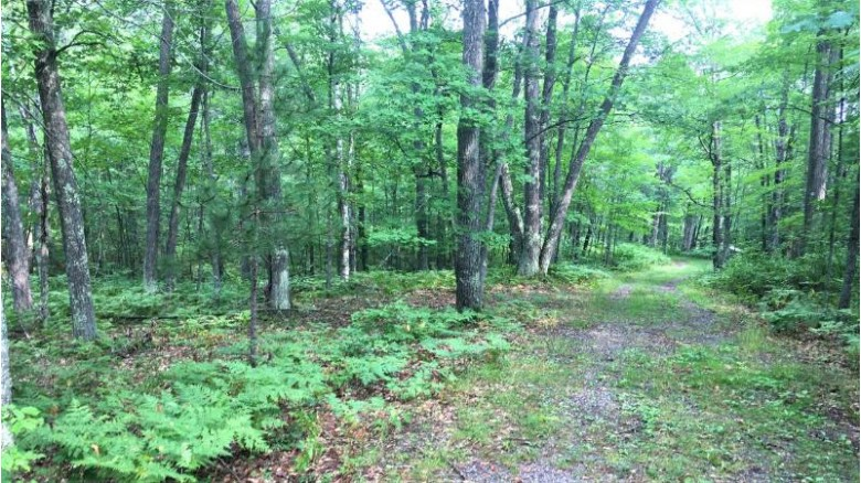 ON Dads Lake Rd, Plum Lake, WI by Eliason Realty Of St Germain $49,900