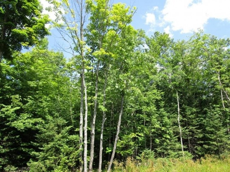 LOT 2 Cth Ff, Mercer, WI by Century 21 Pierce Realty - Mercer $69,900