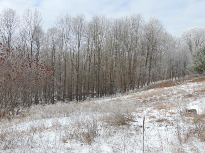 ON Thorn Apple Dr, Wittenberg, WI by Cr Realty $18,500