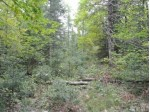 LOT 2 Pixley Wilderness Shores, Lake, WI by Redman Realty Group, Llc $29,900