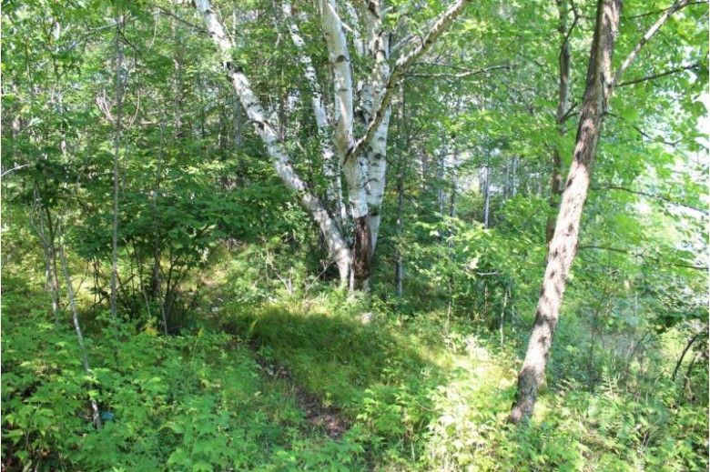 ON Round Lake Rd, Crescent, WI by Pine Point Realty $119,500