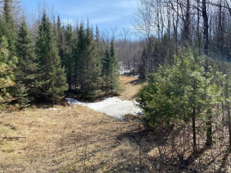 NEAR Boygan Lake Dr, Land O Lakes, WI by Exp Realty, Llc $179,975
