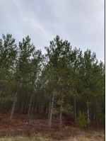 ON Cth Y Nokomis, WI 54487 by First Weber Real Estate $330,395