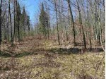 OFF Nelson Rd Shanagolden, WI 54527 by First Weber Real Estate $150,000