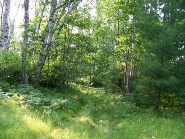 14.5 AC Roland Ave, Pelican, WI by Norwisrealty.com Llc $139,900