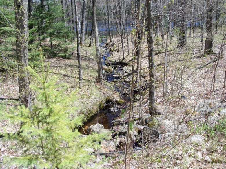 LOT #5 Wadell Rd Bradley, WI 54487 by Woodland Lakes Realty, Llc $119,900
