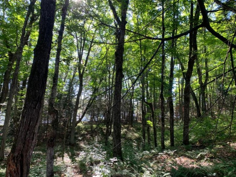 OFF Knuth Ln LOT 3, Land O Lakes, WI by Coldwell Banker Mulleady - Mnq $160,000