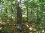 LOT 6 Pristine Waters Dr, Minocqua, WI by Redman Realty Group, Llc $59,500