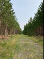 ON Little Rice Dam Rd Little Rice, WI 54487 by First Weber Real Estate $152,000