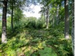 LOT 4 Tooly Ct Newbold, WI 54501 by First Weber Real Estate $44,900