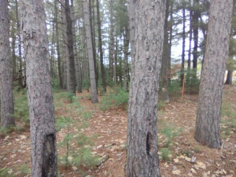 ON Trails End Rd, Pine Lake, WI by First Weber Real Estate $10,000