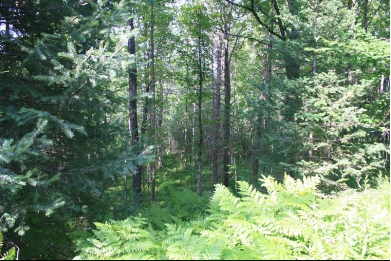 TBD Quiet Waters Ln 6 Presque Isle, WI 54557 by First Weber Real Estate $29,900