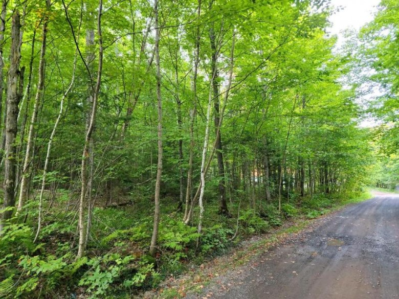 LOT 29 Alpine Dr Anderson, WI 54565 by First Weber Real Estate $22,900
