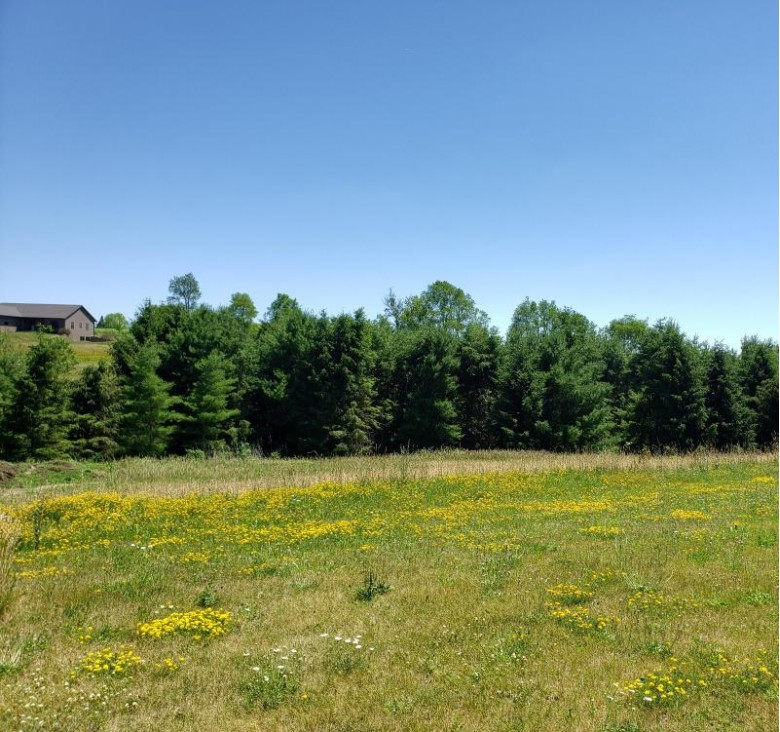 LOT 40 Crossing Meadows, Viroqua, WI by United Country - Oakwood Realty $36,900